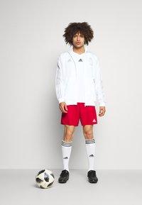 adidas Performance - RBFA BELGIEN UNI JKT - Article de supporter - white/dash grey - 1