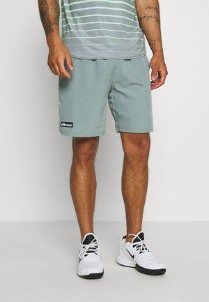 FAB - kurze Sporthose - grey
