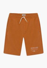 Quiksilver - EASY DAY TRACK  - Teplákové kalhoty - apricot buff - 0