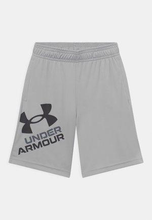 PROTOTYPE LOGO UNISEX - Pantalón corto de deporte - grey