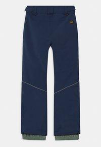 O'Neill - CHARM REGULAR - Zimní kalhoty - scale - 1