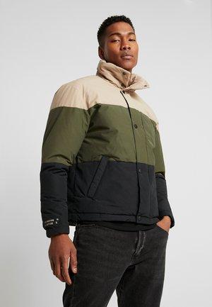 JCONOAH PUFFER - Winter jacket - dune/green