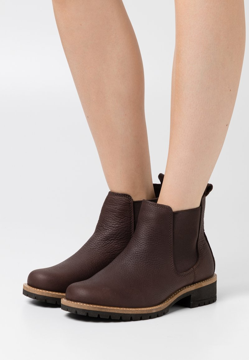 ECCO - ELAINE - Ankle boots - dark brown