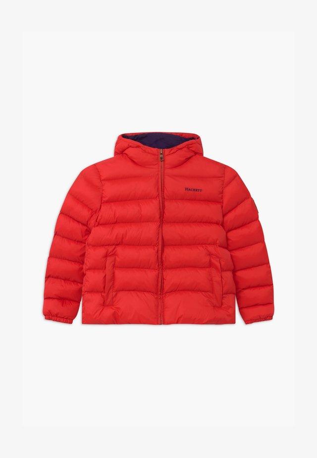 Winterjas - red
