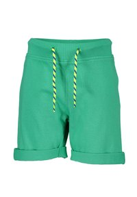 Blue Seven - HERE WE ARE - Shorts - royal - 2