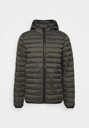 TALAN - Winter jacket - pine grey