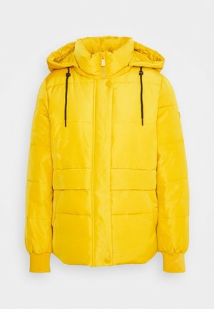 JACKET - Vinterjakker - brass yellow