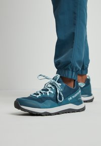 The North Face - W ACTIVIST FUTURELIGHT - Hiking shoes - mallardblue/starlightblue - 0