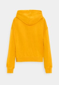 Roxy - GIRLS WHO SLIDE - Jersey con capucha - mineral yellow - 1
