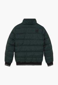 Cars Jeans - KIDS LENUX - Winter jacket - bottle - 2
