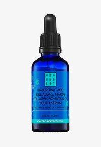 Grounded - BLUE ALGAE AND HYALURONIC ACID SERUM  - Serum - - - 0