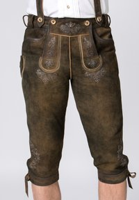 Stockerpoint - JUSTIN - Leather trousers - bison - 4