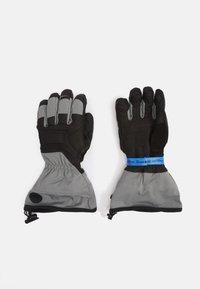 Black Diamond - GUIDE GLOVES - Gloves - ash - 0
