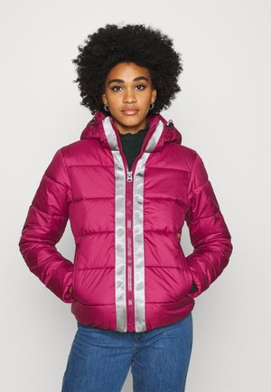 JACKET - Winter jacket - bordeaux