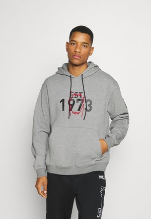 FRANCHISE HOODIE - Luvtröja - medium gray heather