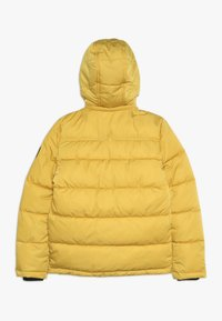 Petrol Industries - Winter jacket - sulphur - 1
