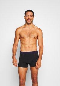 Calvin Klein Underwear - TRUNK 3 PACK - Pants - blue/wild fern/raisin torte - 3