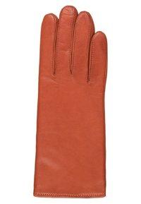 Roeckl - CLASSIC - Gloves - fox - 1
