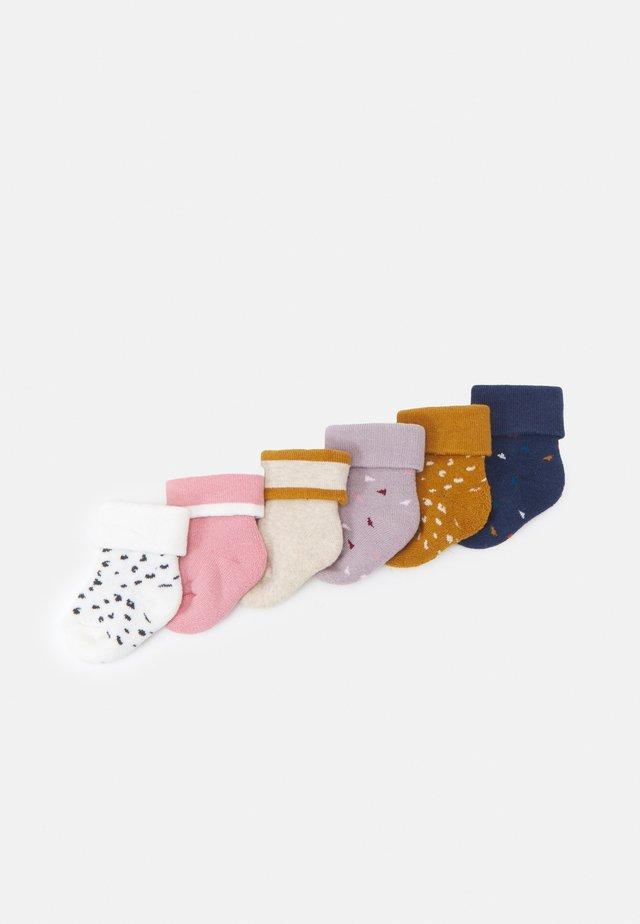 GRAPHIC LEO 6 PACK - Socks - brown/white