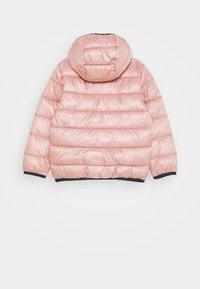 Champion - LEGACY OUTDOOR HOODED JACKET UNISEX - Veste d'hiver - light pink - 1