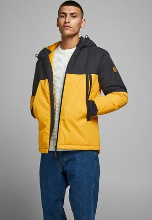 JCOBEATLE JACKET - Light jacket - golden orange