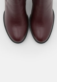 Anna Field - High heeled ankle boots - bordeaux - 5