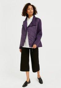 Finn Flare - Winter jacket - violet - 1