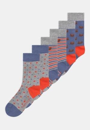 MIXED BEAR DESIGN 6 PACK UNISEX - Socks - multi-coloured