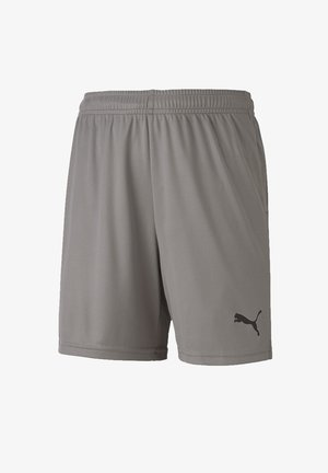 TEAMGOAL UNISEX - Sports shorts - grau