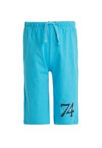 DeFacto - 2 PACK - Shorts - blue - 1