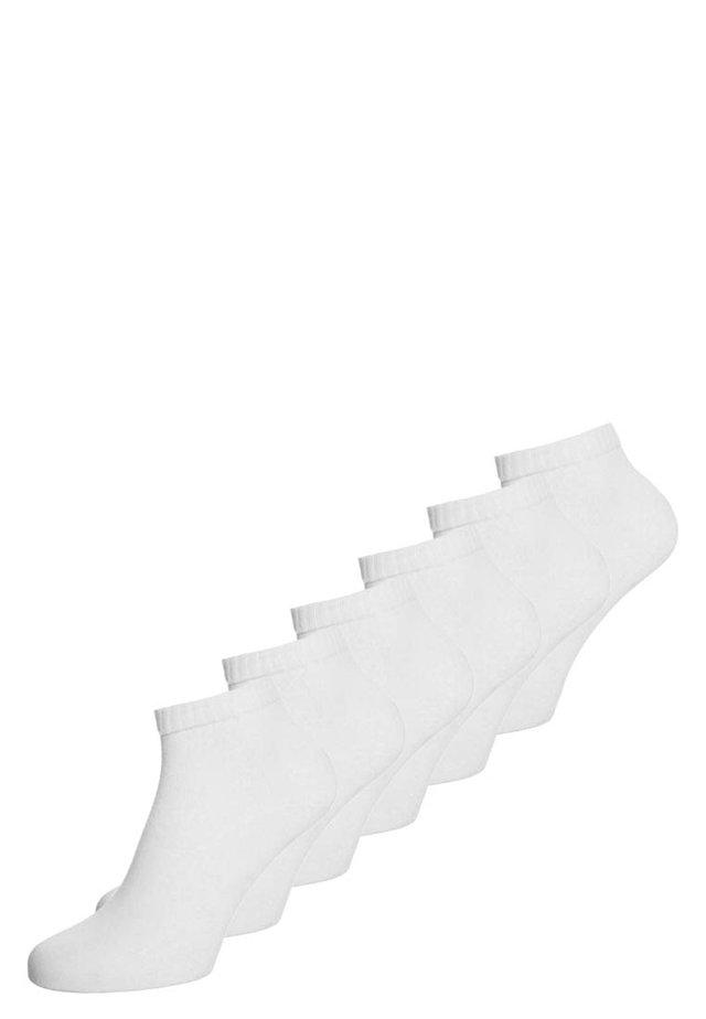 6 PACK - Ponožky - white