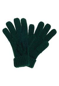 Superdry - ARIZONA - Gloves - green - 1