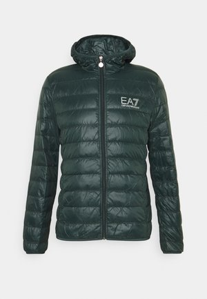JACKET - Down jacket - scarab