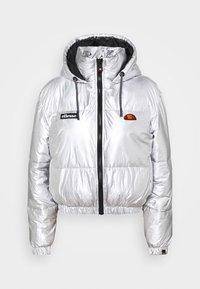 MUES - Winter jacket - silver