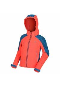 Regatta - ASTROX II  - Soft shell jacket - fieryco/petr - 2