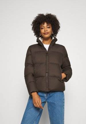 PUFFER JACKET SHORT STAND UP COLLAR ZIPP - Down jacket - dark chocolate