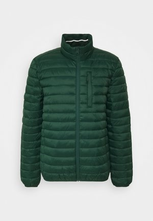 RECTHINS  - Winter jacket - dark green