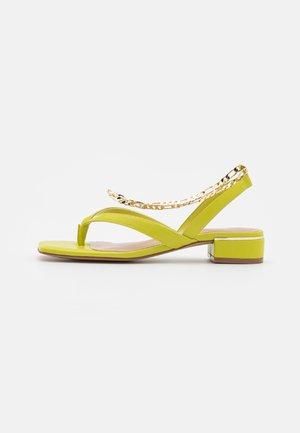AGRALELLA - T-bar sandals - bright green