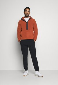 The North Face - CARBONDALE - Hoodie - brown - 1