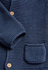 Next - Strikjakke /Cardigans - blue - 2