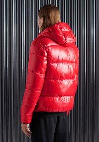 Superdry - Winterjas - rouge red - 1