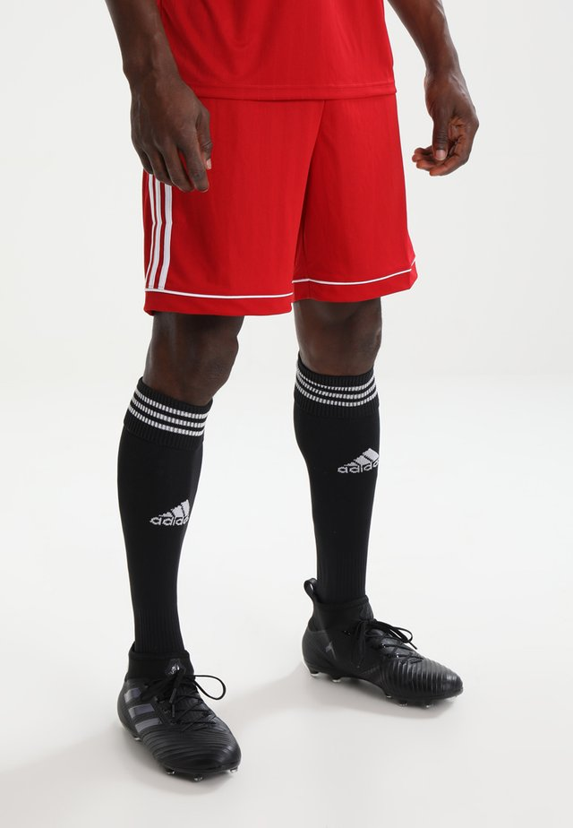SQUADRA CLIMALITE FOOTBALL 1/4 SHORTS - Pantaloncini sportivi - powred/white