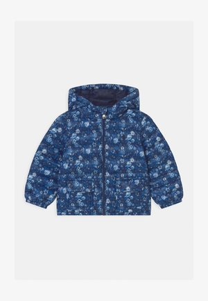 OUTERWEAR - Winterjas - navy