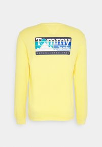 Tommy Jeans - BACK MOUNTAIN GRAPHIC TEE - Maglietta a manica lunga - valley yellow - 1
