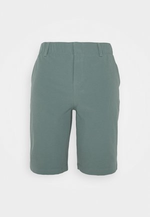 LINKS SHORT - Korte broeken - lichen blue