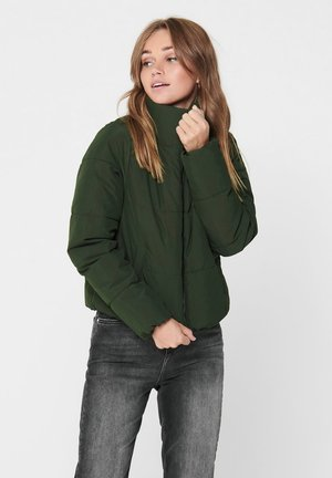 PUFFER - Winter jacket - rosin