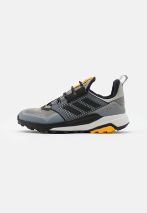TERREX TRAILMAKER WINTER.RDY  - Hiking shoes - metallic grey/core black/legend earth