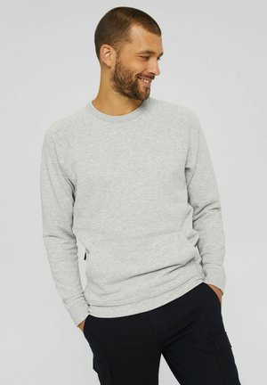REIMAGINEFLEXIBILITY - Sweatshirt - light grey