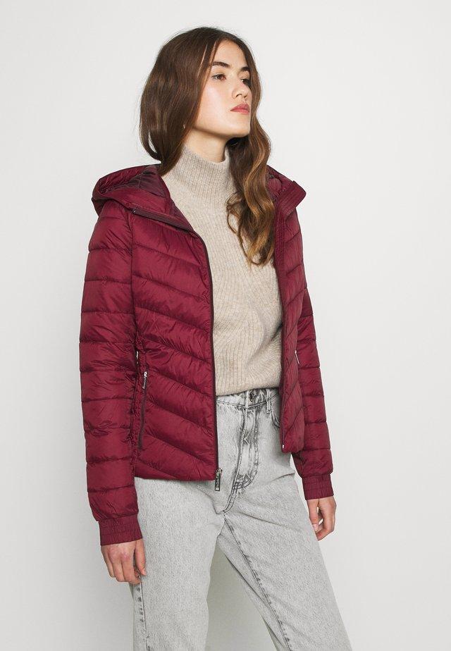 LIGHTWEIGHT PUFFER - Light jacket - zinfandel