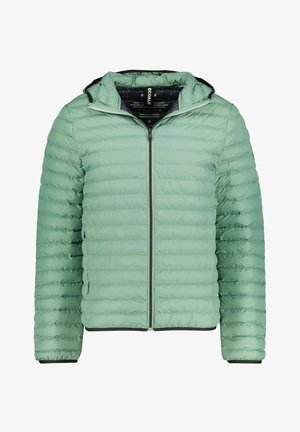 ATLANTIC - Winter jacket - grün